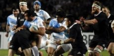 Los Pumas cayeron ante los imparables All Blacks