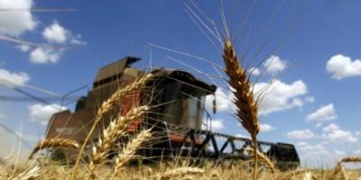 """La Sociedad Rural advirtió que el campo """"está atravesando la peor crisis de la última década"""""""