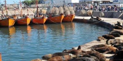 El secretario de Agricultura acordó temas de agenda con el sector pesquero