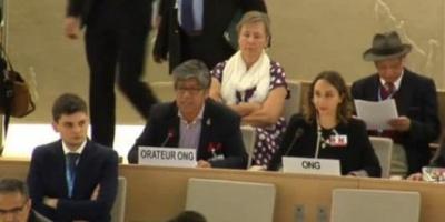 """Con aval de ONG extranjera que promueve un """"Reino"""" patagónico, los mapuches llevaron su protesta a la ONU"""