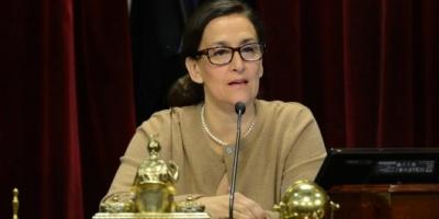 Michetti estimó que en un mes y medio se podría votar la ley del aborto en el Senado