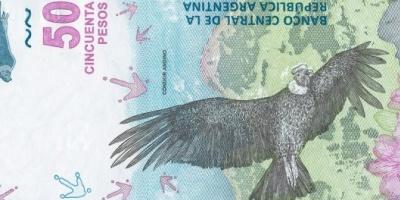 El Banco Central presentó el nuevo billete de $50, con un cóndor como protagonista