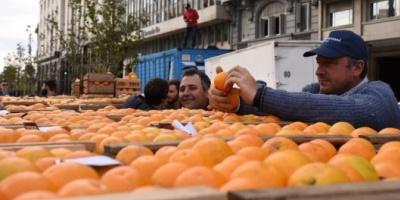 Productores regalaron 30 mil kilos de frutas y verduras en Plaza de Mayo