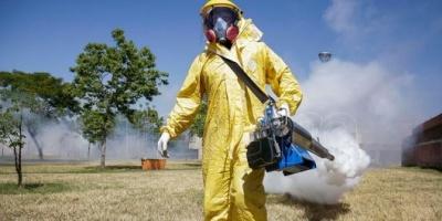 Con la llegada del calor, las provincias activan sus campañas de prevención contra el dengue