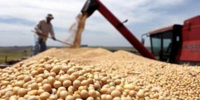 Las lluvias en Estados Unidos mejoran las previsiones y el precio de la soja cayó US$13